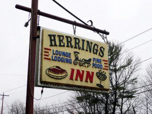 Herrings NY Lawyer